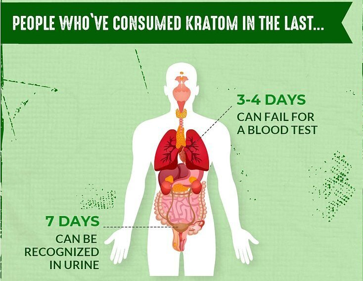 Does Kratom Show Up In Drug Tests