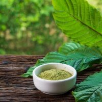 What is Kratom Like An Educational Guide With Everything to Know 850x491 1