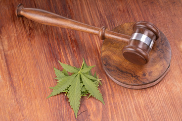 Kratom's Legality & What You Should Know Before You Consume
