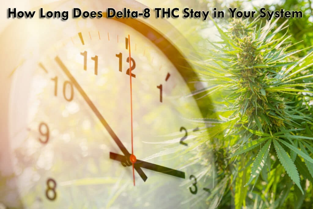 How Long Does Delta-8 THC Stay in Your System?